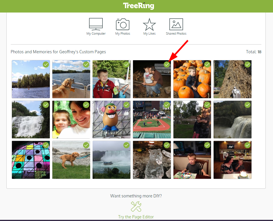 Custom_Page_Builder_-_Photos_in_Tray_with_Green_Check.png